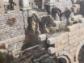 Dark-Souls-III_2017_03-15-17_001_140_cw140_ch78