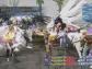 Final Fantasy XII The Zodiac Age 15