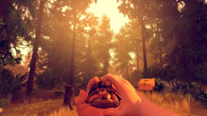 Firewatch E3
