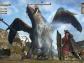 DragonsDogmaOnline-121.jpg