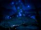 Spirit Tree.png