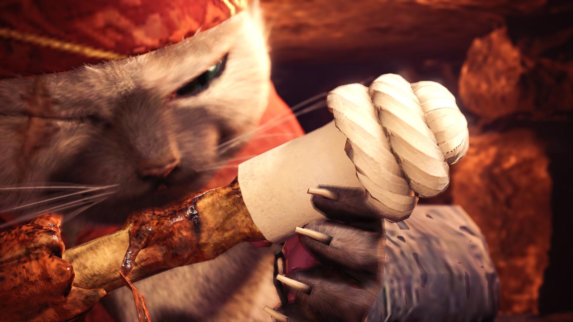 Monster Hunter World chef miau-scoloso