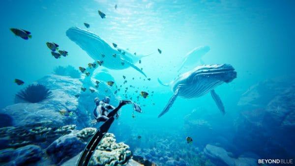 Una balena nel profondo blu