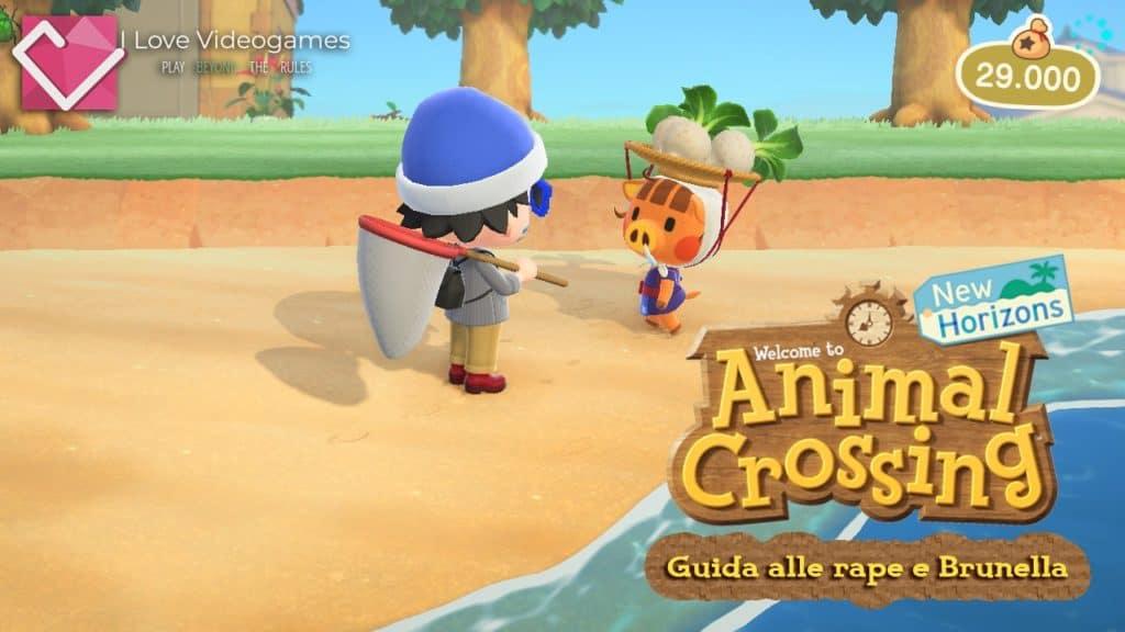 Brunella parla con il personaggio principale di Animal Crossing: New Horizons su una spiaggia