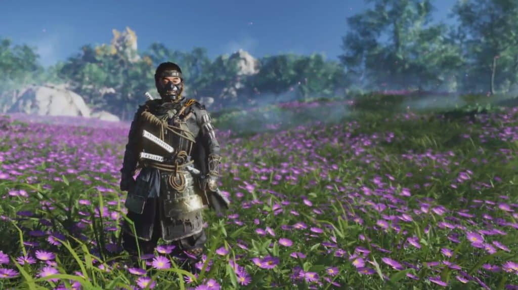 Jin guarda l'orizzonte mentre è in un campo di fiori rosa