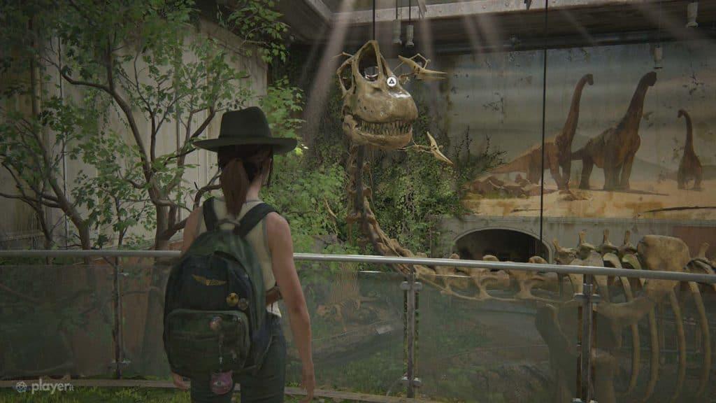Ellie bambina trova un fossile di dinosauro nel museo del Wyoming