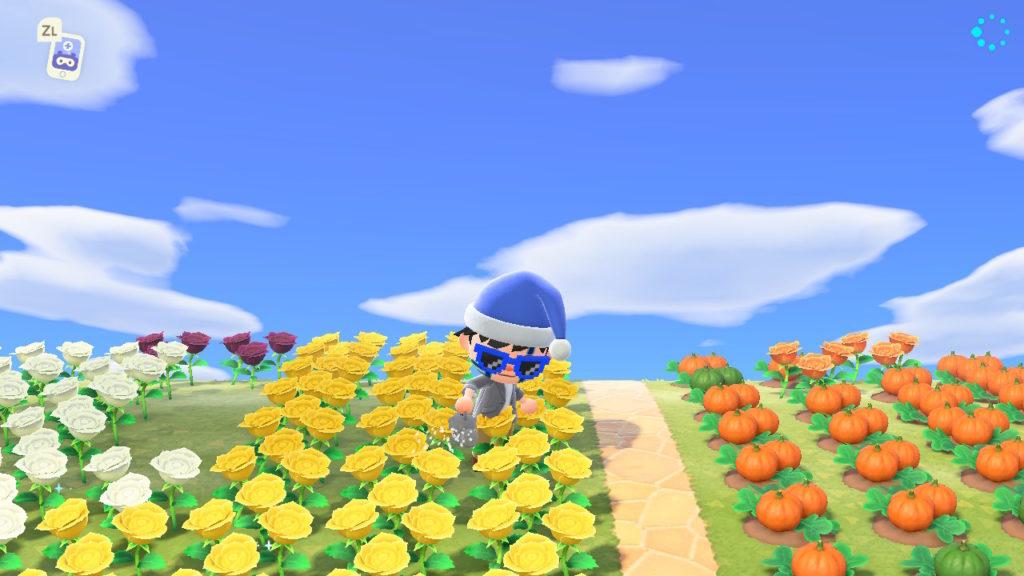 Annaffiare dei fiori su Animal Crossing: New Horizons