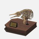 Cranio Oftalmosauro
