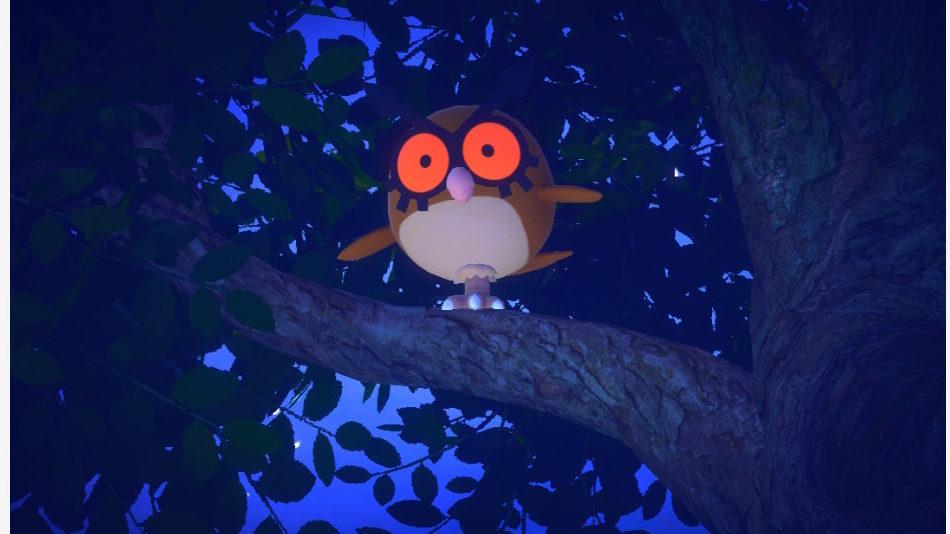 Hoothoot su un ramo in New Pokémon Snap