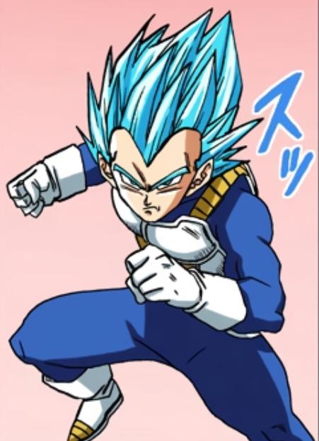 Vegeta Super Saiyan Blue Perfezionato