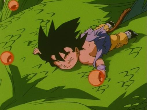 Goku scompare seguendo il Drago Shenron.